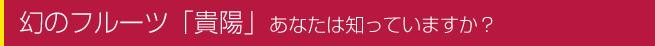 幻のフルーツ「貴陽」